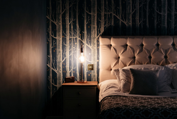 ND-portfolio-Dark-Moody-Whimsical-bedroom-05